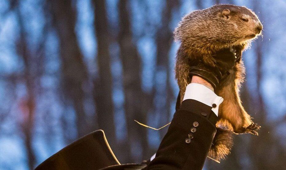 Punxsutawney Phil wird von einem Mitglied des Inner Circles am Groundhog Day 2018 für das Publikum hochgehalten.